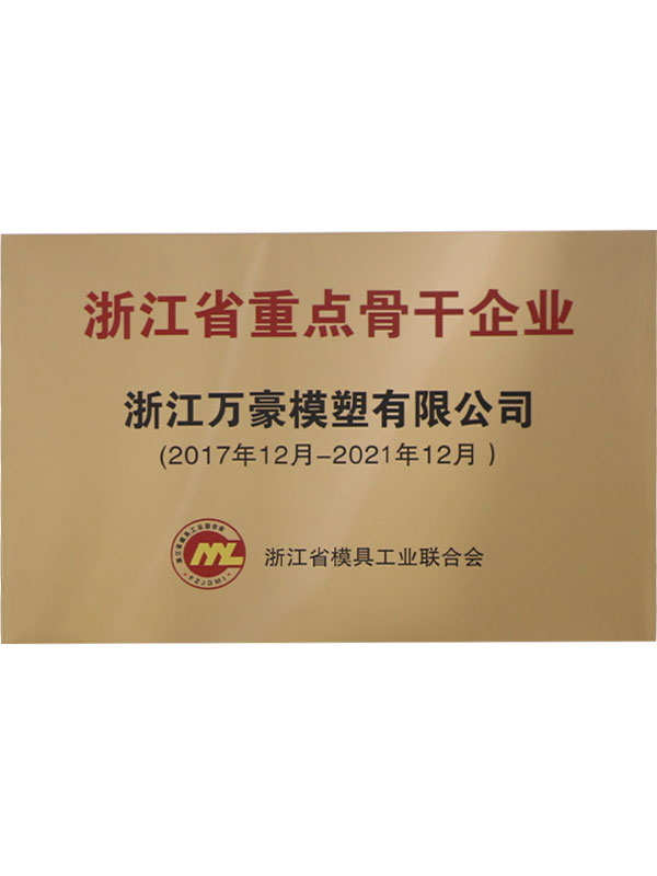 浙江省重点骨干企业